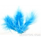 20 plumes duvet - Turquoise